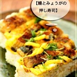 鰻とみょうがの押し寿司