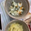 離乳食☆野菜煮込みご飯
