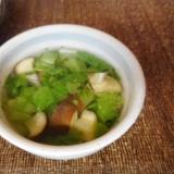 ナスとレタスのスープ