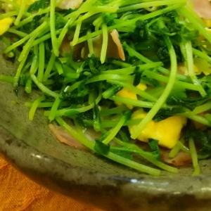 【節約レシピ】豆苗とベーコンの卵炒め