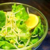 豆もやしのレモン漬け*レタスサラダ