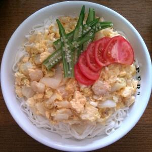 糖質制限★糖質0麺で低糖質★白菜の餡かけうどん♡