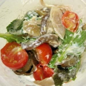 炒め茄子のサラダ