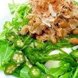 体にいい(・‿・)☝「ねばねば豆腐サラダ」