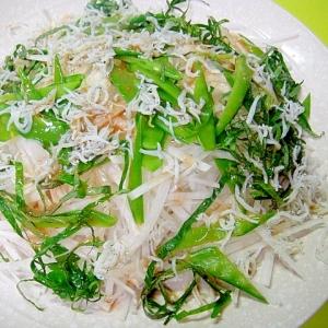 大根と絹さやしらすのサラダ