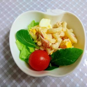 茹で卵とツナ缶のマカロニサラダ