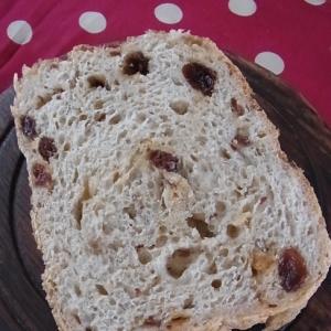 ホームベーカリーでノンオイルレーズンご飯パン