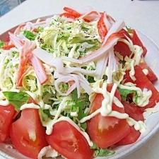 *水菜とキャベツのトマトサラダ*