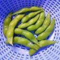 冷凍枝豆の美味しい茹で方