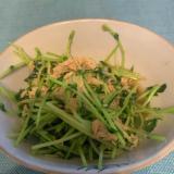 ささっと一品!水菜とツナのサラダ