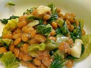 広島菜漬納豆