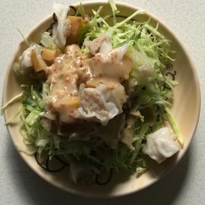 キャベツきゅうり白菜焼売サラダ