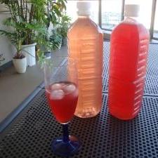 シソジュース 青&赤