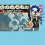 こどもの日の愛犬用 太巻寿司☆ 節分の恵方巻にも!