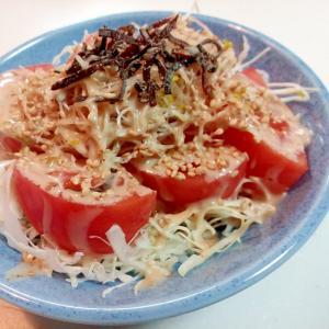 キャベツ・トマト・アルファルファ・塩昆布のサラダ