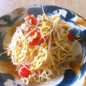☆お豆の風味いっぱい☆豆モヤシと豚ミンチ炒め