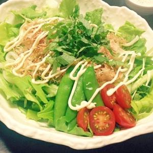 野菜たっぷり☆簡単ヘルシーサラダうどん☆