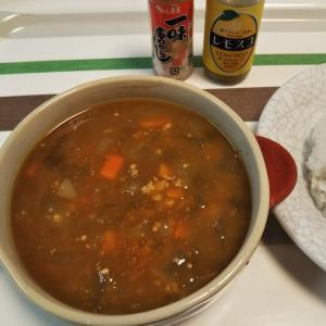 茄子と冬瓜の、スープカレー風カレー
