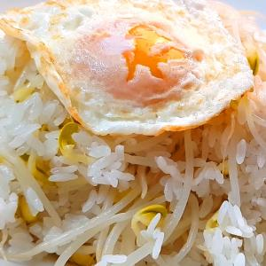 韓国ご飯。 豆もやしご飯 コンナムルパッ 콩나물밥