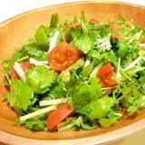 ホワイトセロリとパクチーのサラダ