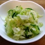 キャベツと胡瓜の塩もみサラダ