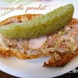 お手軽フランス料理 鶏肉のテリーヌ