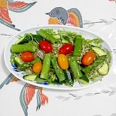 アスパラとブロッコリースプラウトのサラダ