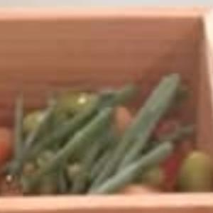 ホタテと枝豆、ネギを添えて