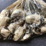 牡蠣の真空調理