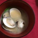 うちの味噌汁 ハマグリの味噌汁