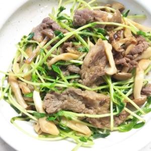 豆苗と牛肉のチンジャオロース風