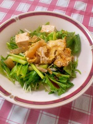 栄養満点♪豆腐&大根のみそ炒めサラダ