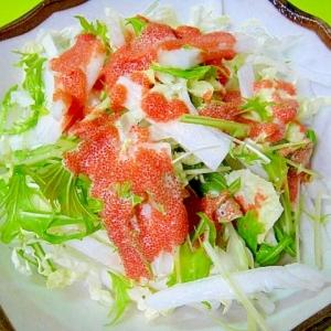 白菜と水菜のサラダ☆明太子ソース