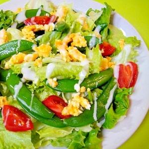 スナップエンドウと炒り卵の春色サラダ
