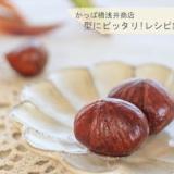 ふっくらつやつや 栗の渋皮煮【No.360】