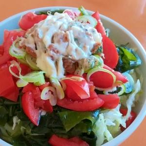 野菜たっぷり!サラダうどん