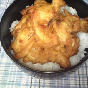 簡単晩ご飯♪かき揚げ丼♪