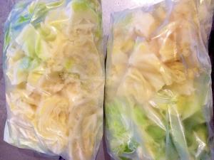 キャベツの冷凍保存方法!焼きそば炒め物みそ汁に!