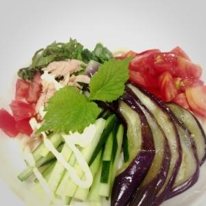夏野菜のサラダうどん