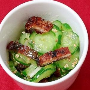 うちの副菜「鰻とキュウリの酢の物」