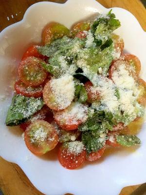ミニトマトと粉チーズのサラダ