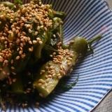 たらの芽の中華サラダ