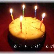 ☆オレオdeチーズケーキ☆簡単☆濃厚☆NY☆FP☆
