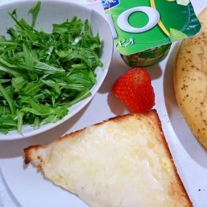 ワンプレート 子ども用のフルーツとチーズトースト