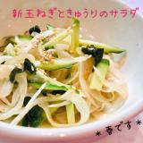 中華風♡新玉ねぎときゅうりのサラダ