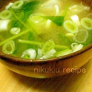 小松菜・ねぎ・さといもの味噌汁