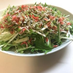水菜の雑魚ふりサラダ