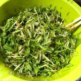【低糖質】水菜と鰹節のサラダ