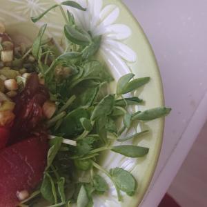 マグロの中華風サラダ