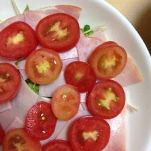 かいわれとハムとトマトのかわいいサラダ